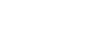 Verge Digital Media